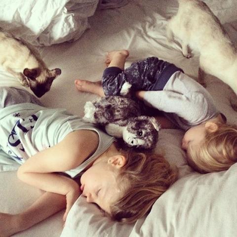 Good morning  lauter #Kinder und #Katzen in meinem Bett... Was kann es schöneres geben  #keinplatz #undvielzufrüh #duesseldorf #photography #cats .... Habt einen schönen Tag ihr lieben Menschen da draußen... Streut liebe wie Konfetti