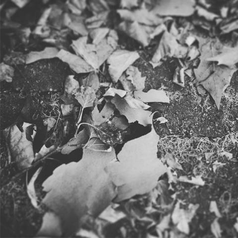 Herbst18 #life